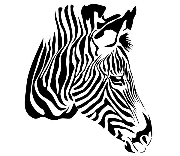 Free Zebra Head Vector Zebra Vector Png