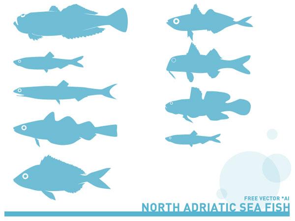 Vector Adriatic Sea Fish Silhouettes