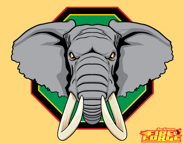 Vector African Elephant Head Image