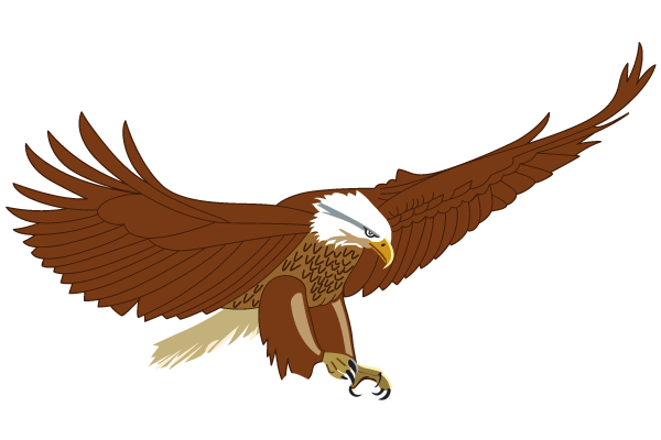 flying eagle clip art - photo #18