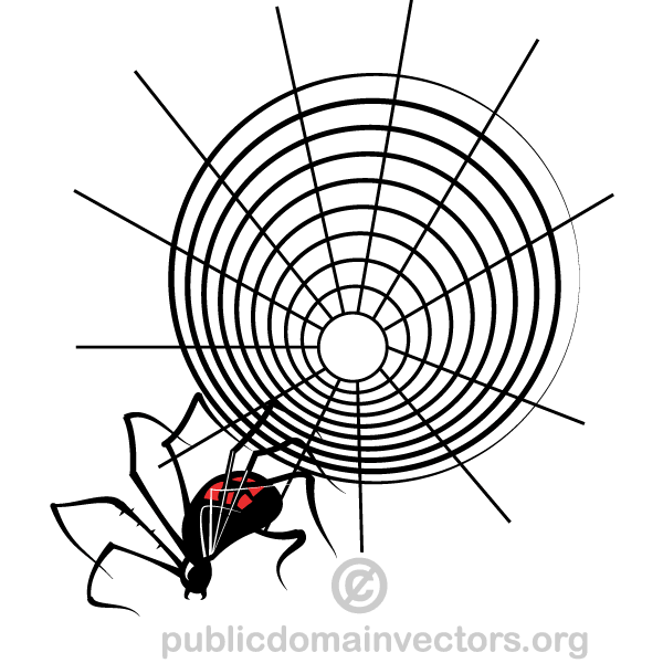 Spider Web Vector Graphics | Download Free Vector Art ...