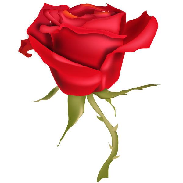 Red Rose Flower Art Download Free Vector Art Free Vectors