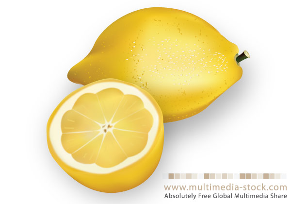 lemon vector free download - photo #16